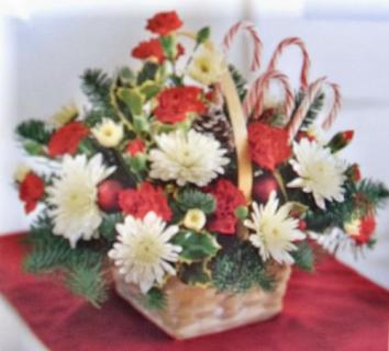 AF Candy Cane Lane Arrangement