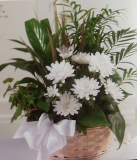 Assorted Planter Basket with Fresh Flowers