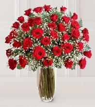 Arnold Florist Premium 3 Dozen Long Stemmed Red Rose Bouquet