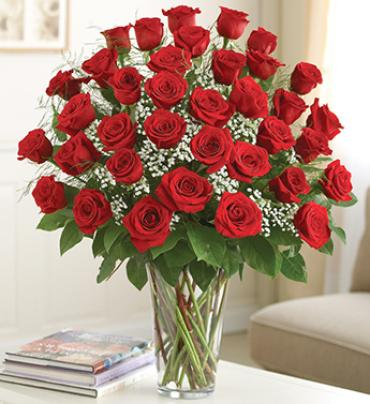 AF Three Dozen Roses Vased