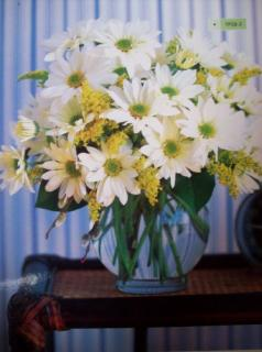 All White Daisy Bouquet