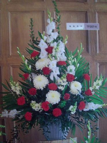 Red and White Arrangement I