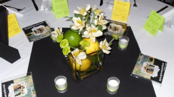 Lemon-Lime Cube Arrangements