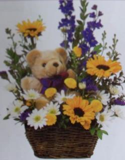 Bear in Basket