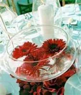 Floating Gerberas