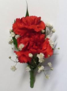 AF Red Mini Carnation Bout
