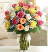 AF Two Dozen Mixed Roses Vased