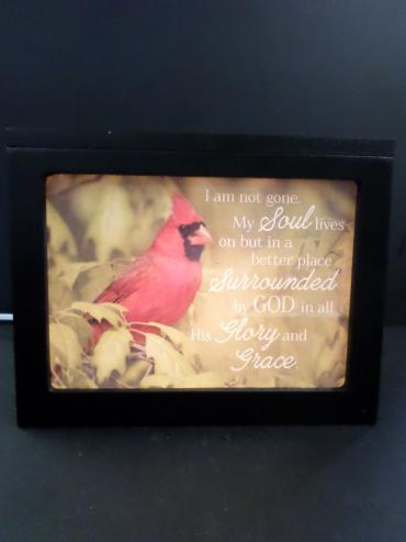Cardinal Light Up Message Box
