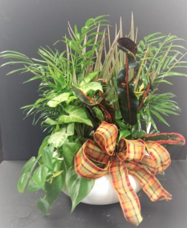 Assorted Planter Ceramic With Fall Bow
